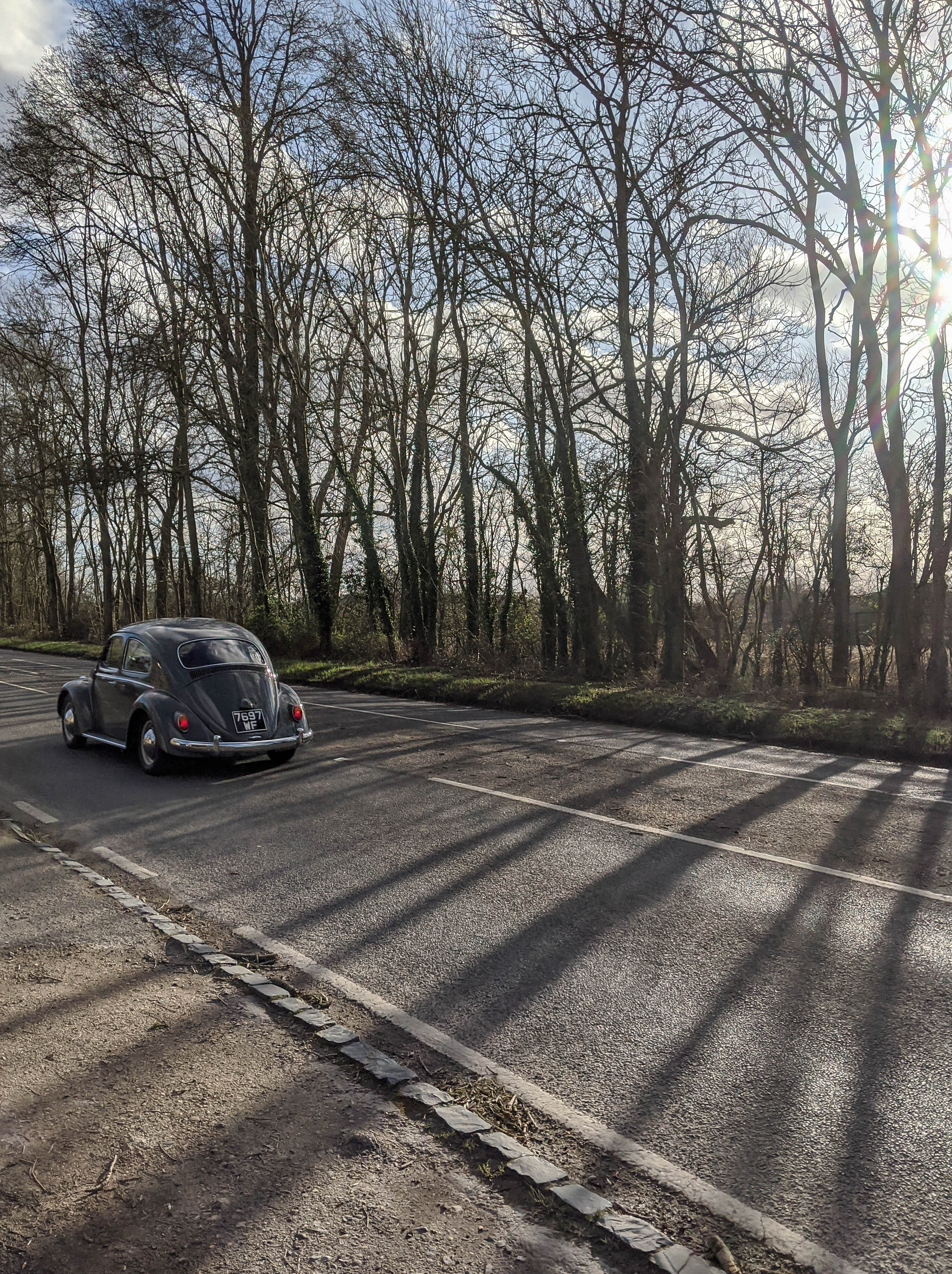 electric beetle driving into the sunset