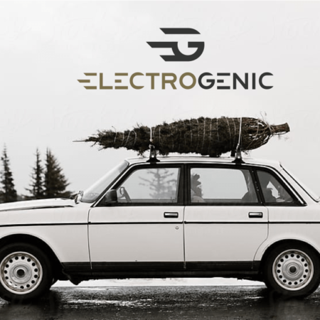 Electric Land Rovers and off-road vehicles